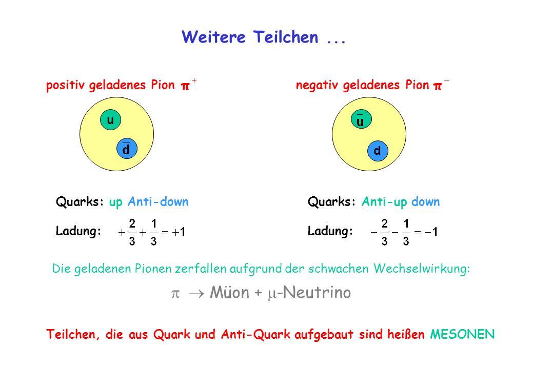 Weitere Teilchen ...   Müon + -Neutrino positiv geladenes Pion
