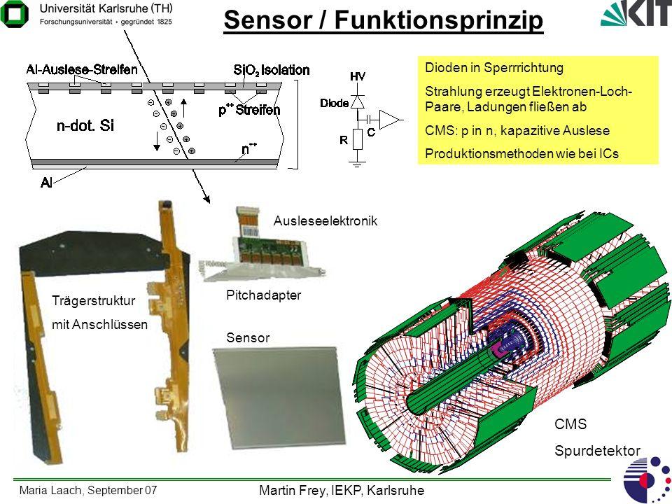Sensor / Funktionsprinzip