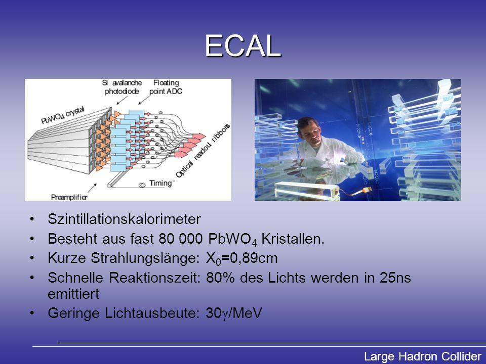 ECAL Szintillationskalorimeter