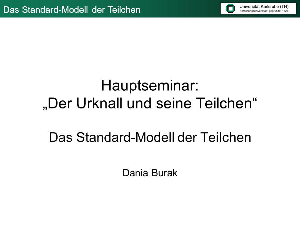 """Hauptseminar: """"Der Urknall und seine Teilchen"""