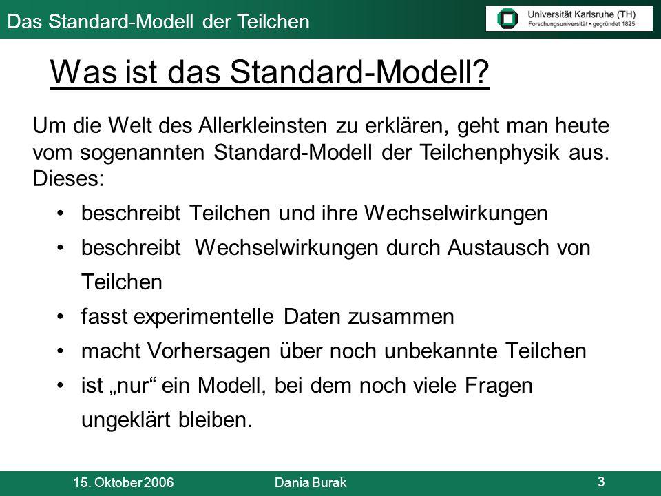 Was ist das Standard-Modell