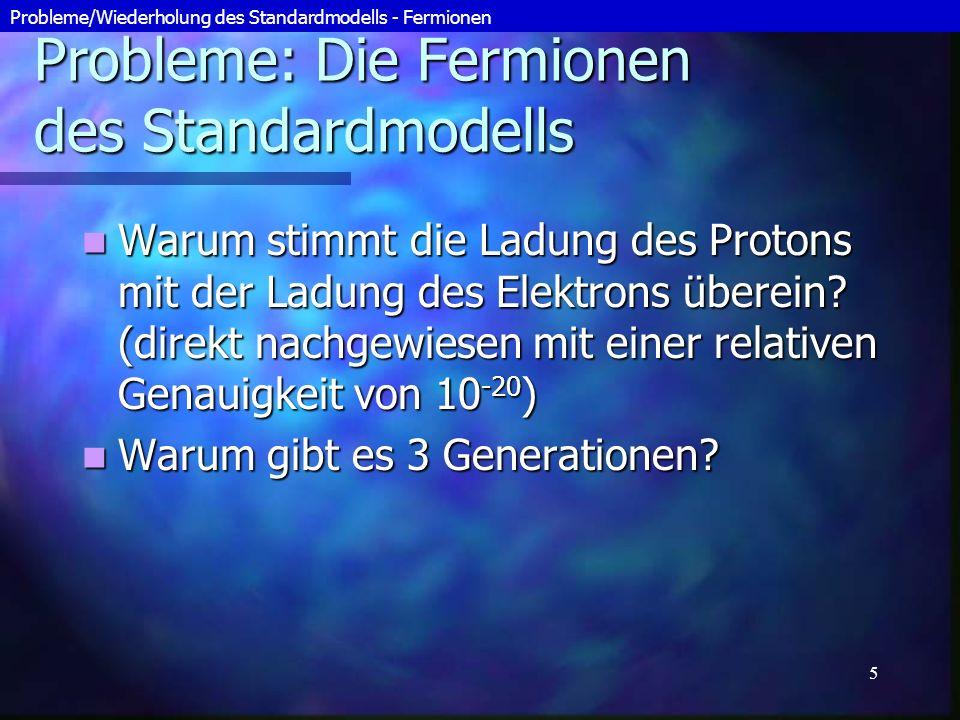 Probleme: Die Fermionen des Standardmodells