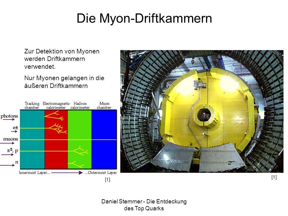 Die Myon-Driftkammern