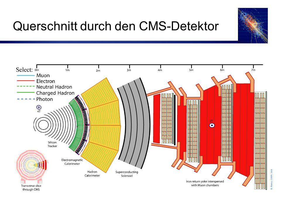 Querschnitt durch den CMS-Detektor