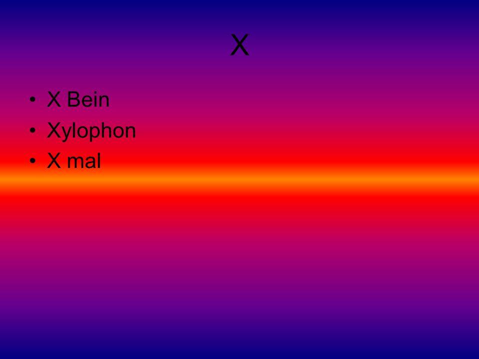 X X Bein Xylophon X mal