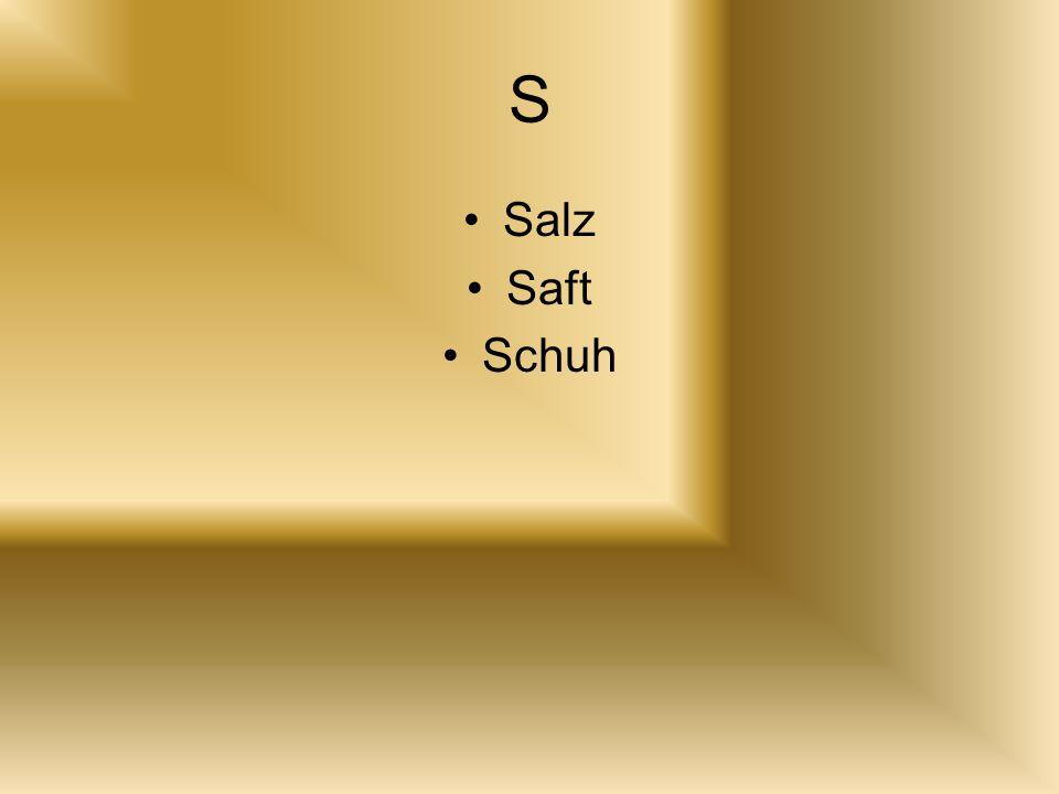 S Salz Saft Schuh
