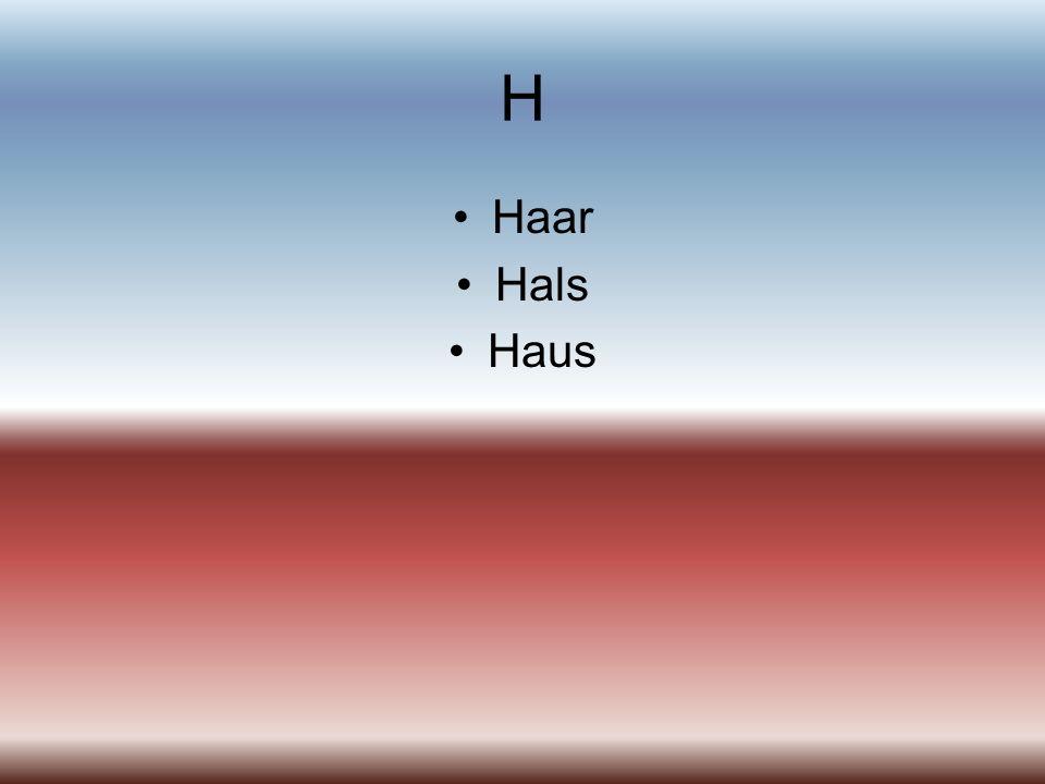 H Haar Hals Haus