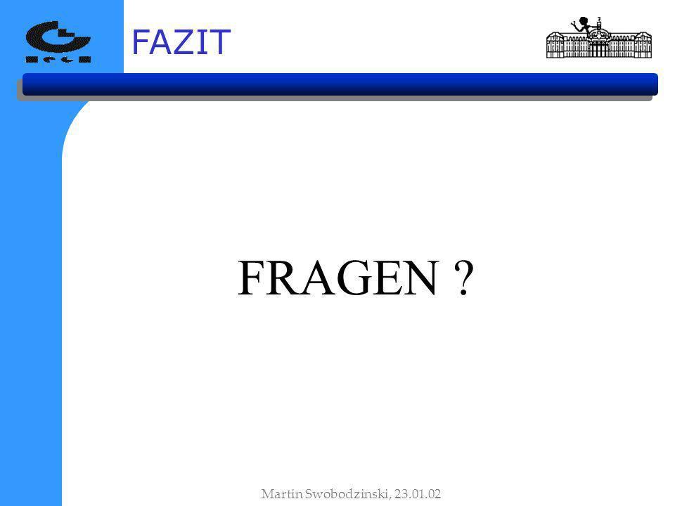 FAZIT FRAGEN Martin Swobodzinski, 23.01.02