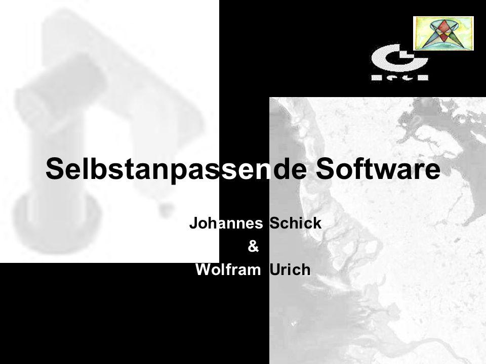 Selbstanpassende Software