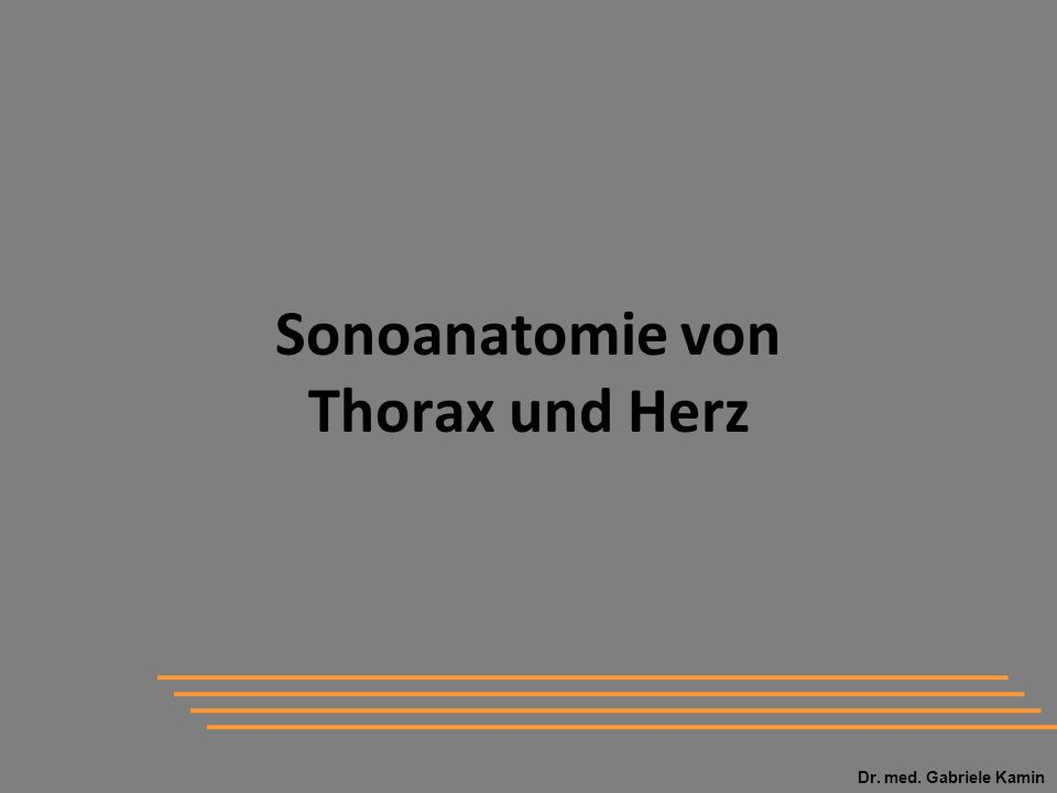 Sonoanatomie von Thorax und Herz