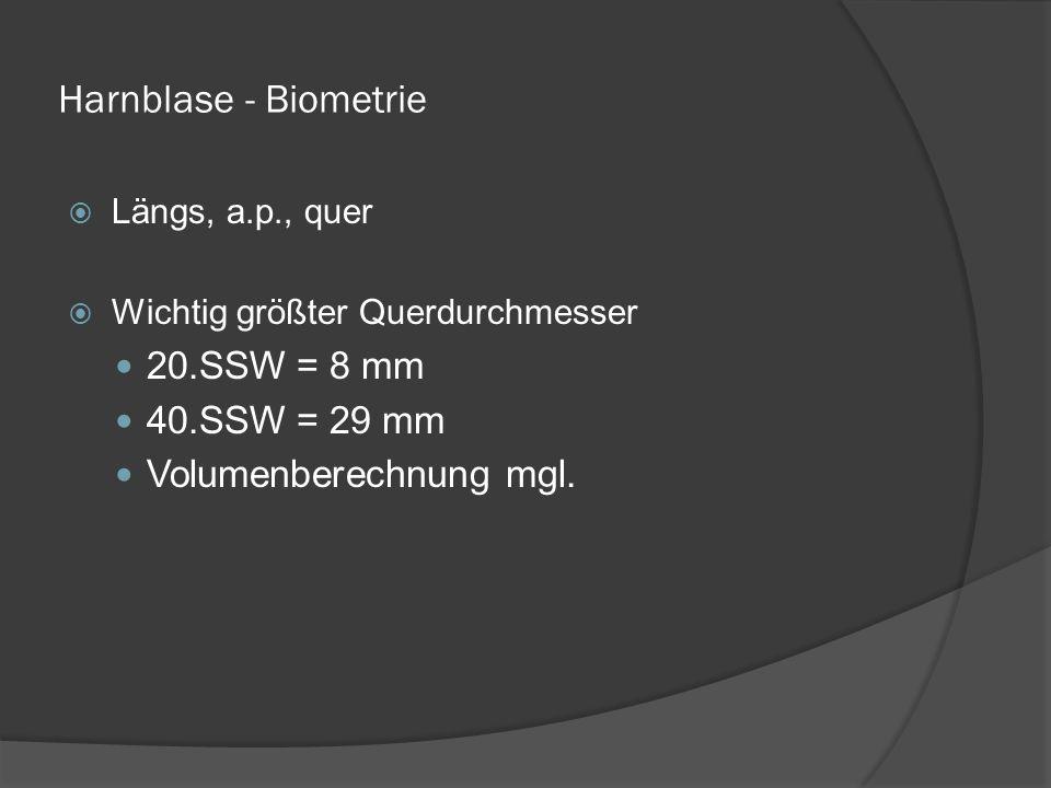 Harnblase - Biometrie 20.SSW = 8 mm 40.SSW = 29 mm
