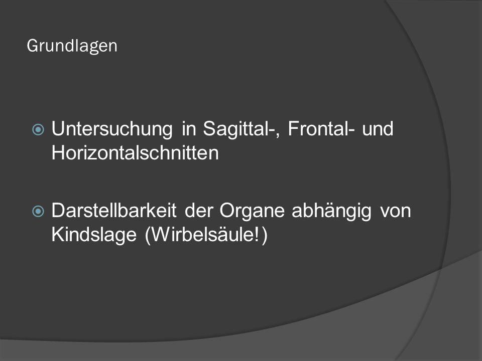 Untersuchung in Sagittal-, Frontal- und Horizontalschnitten