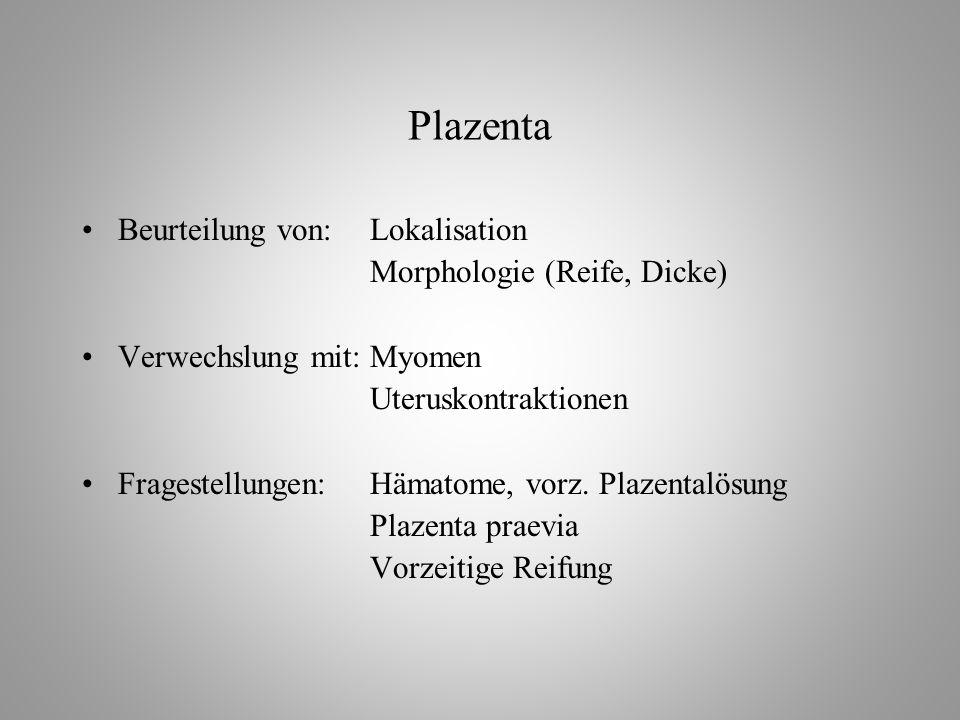 Plazenta Beurteilung von: Lokalisation Morphologie (Reife, Dicke)