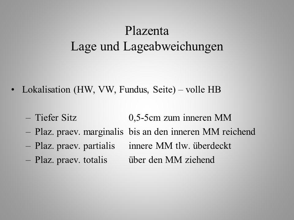 Plazenta Lage und Lageabweichungen