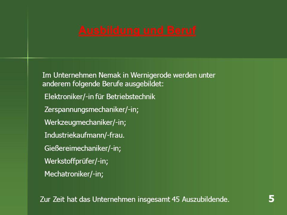 Ausbildung und Beruf Im Unternehmen Nemak in Wernigerode werden unter anderem folgende Berufe ausgebildet: