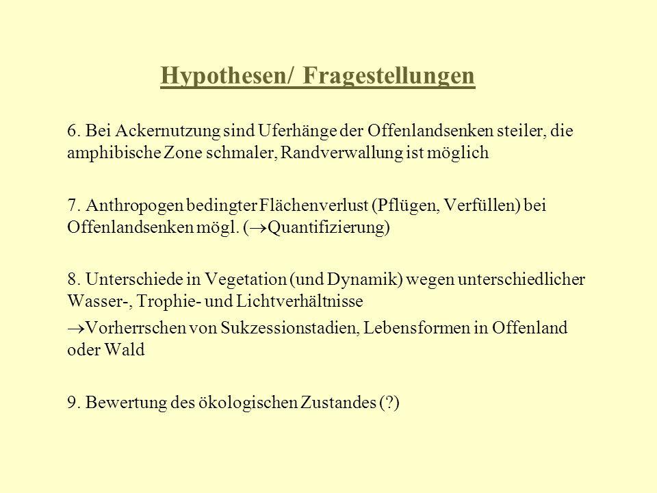 Hypothesen/ Fragestellungen