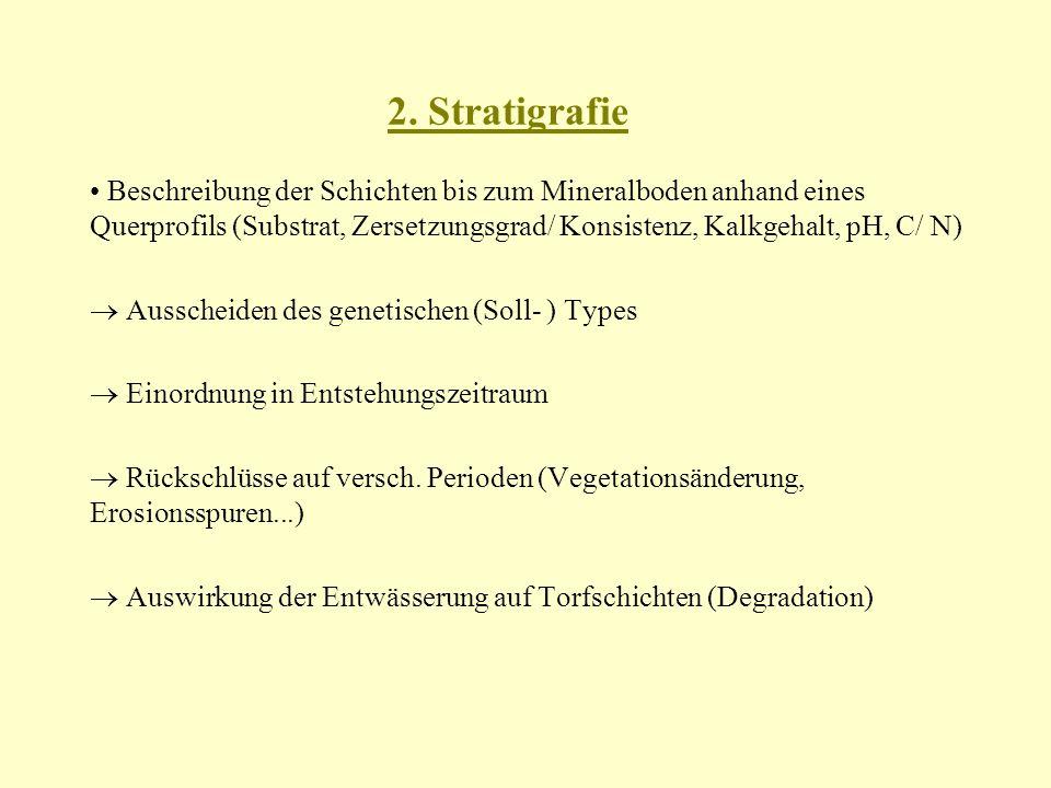 2. Stratigrafie