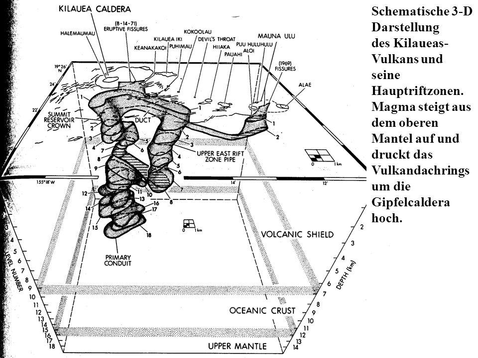 Schematische 3-D Darstellung