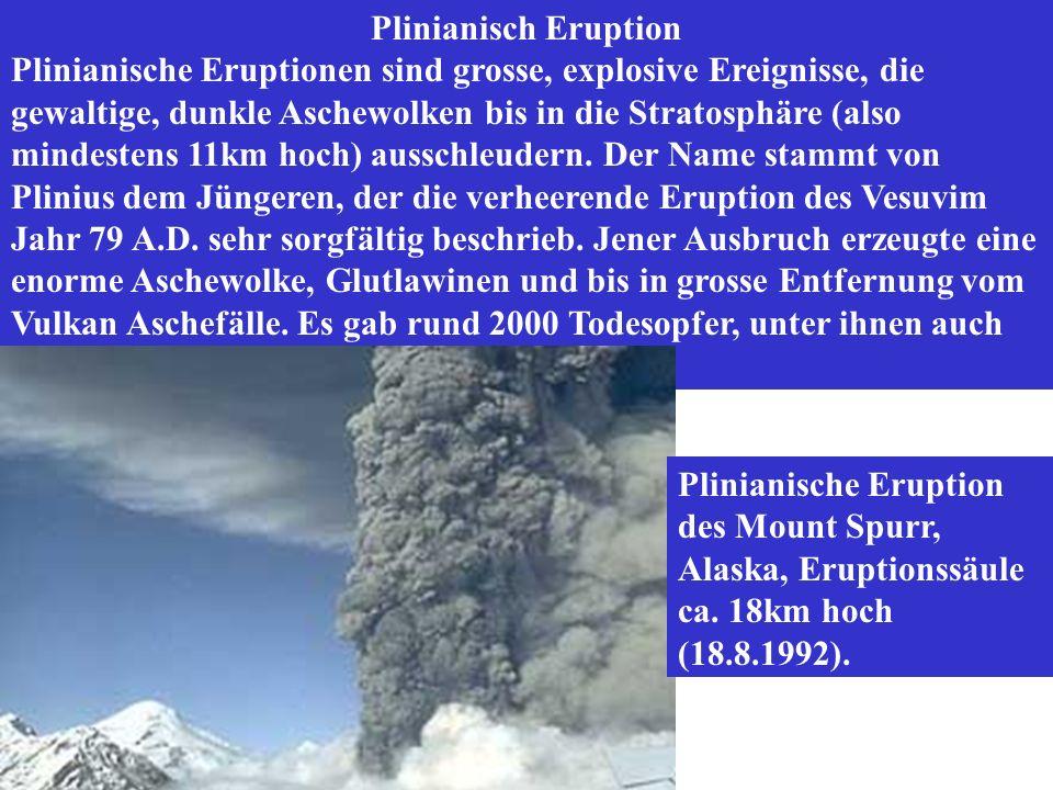 Plinianisch Eruption