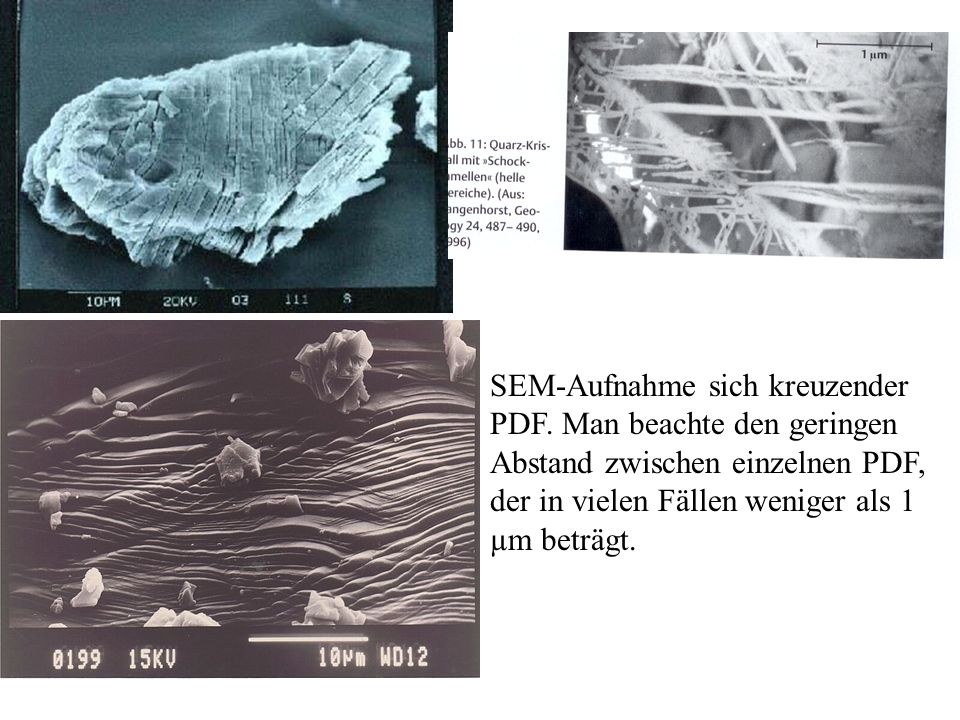 SEM-Aufnahme sich kreuzender PDF