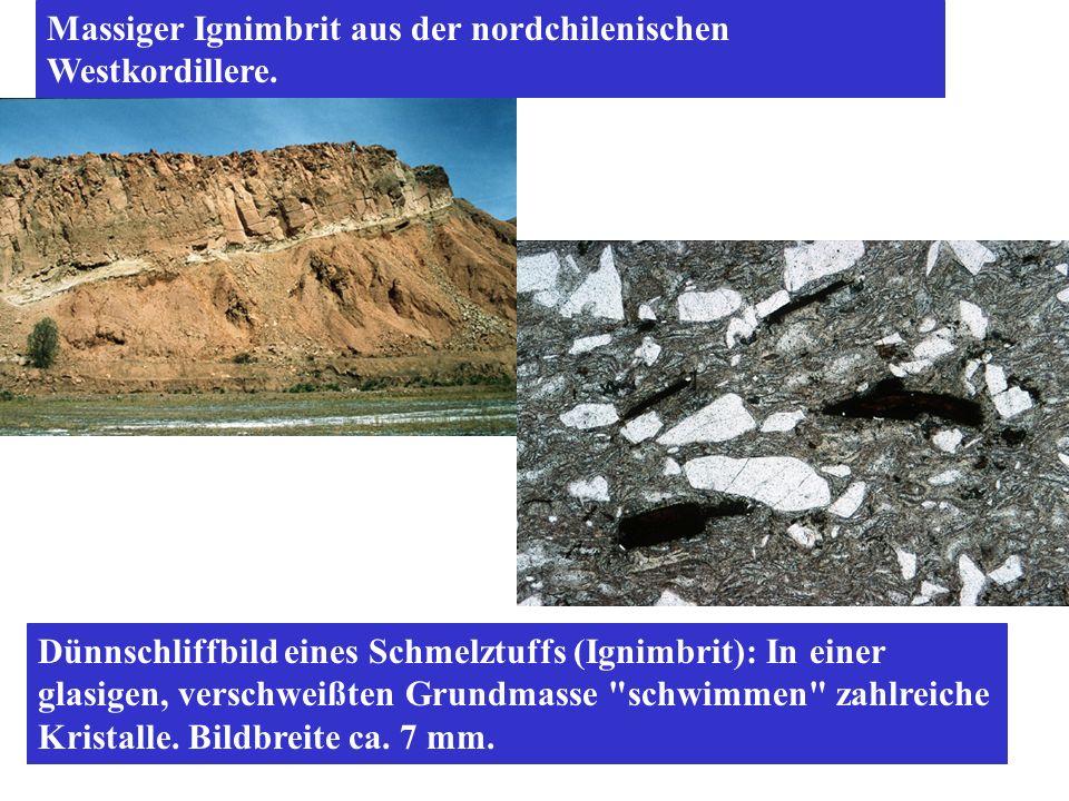 Massiger Ignimbrit aus der nordchilenischen Westkordillere.