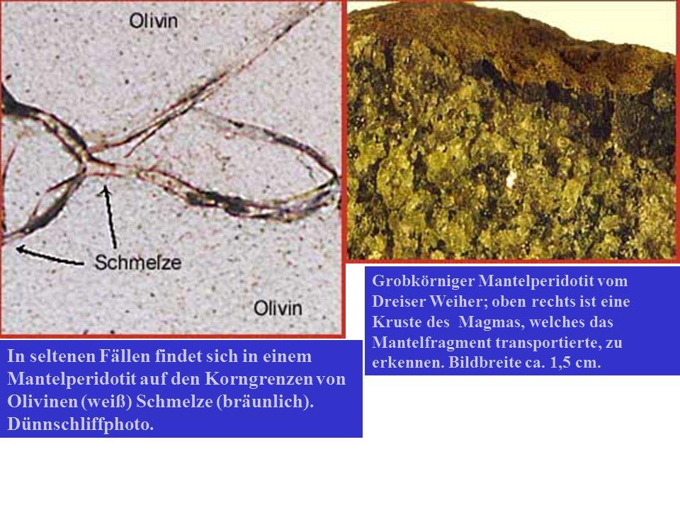 Grobkörniger Mantelperidotit vom Dreiser Weiher; oben rechts ist eine Kruste des Magmas, welches das Mantelfragment transportierte, zu erkennen. Bildbreite ca. 1,5 cm.