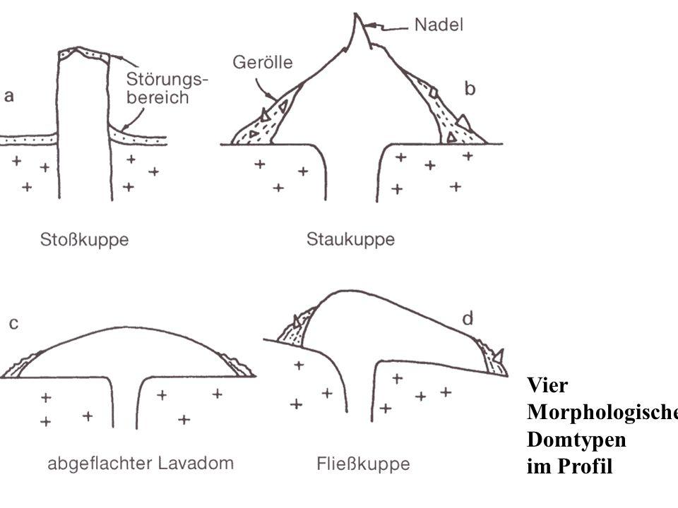 Vier Morphologische Domtypen im Profil