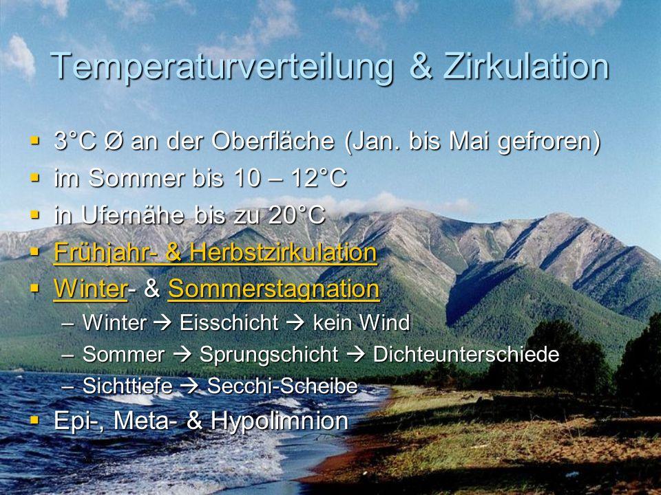 Temperaturverteilung & Zirkulation