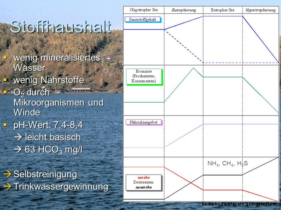 Stoffhaushalt wenig mineralisiertes Wasser wenig Nährstoffe