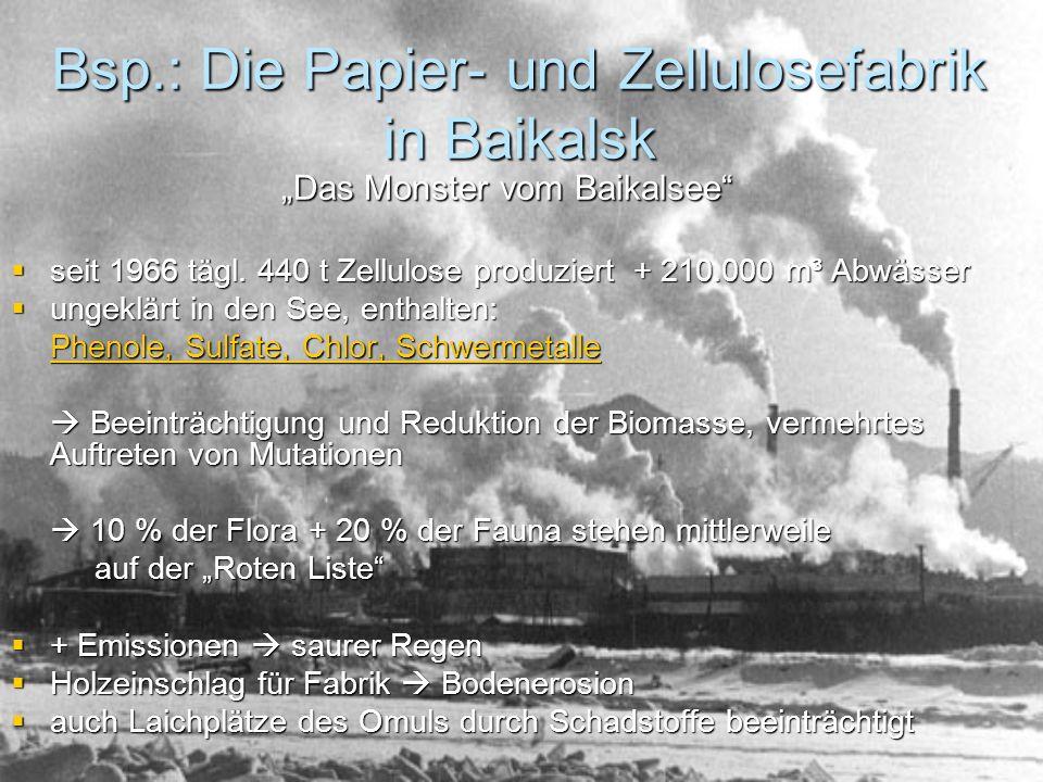 Bsp.: Die Papier- und Zellulosefabrik in Baikalsk