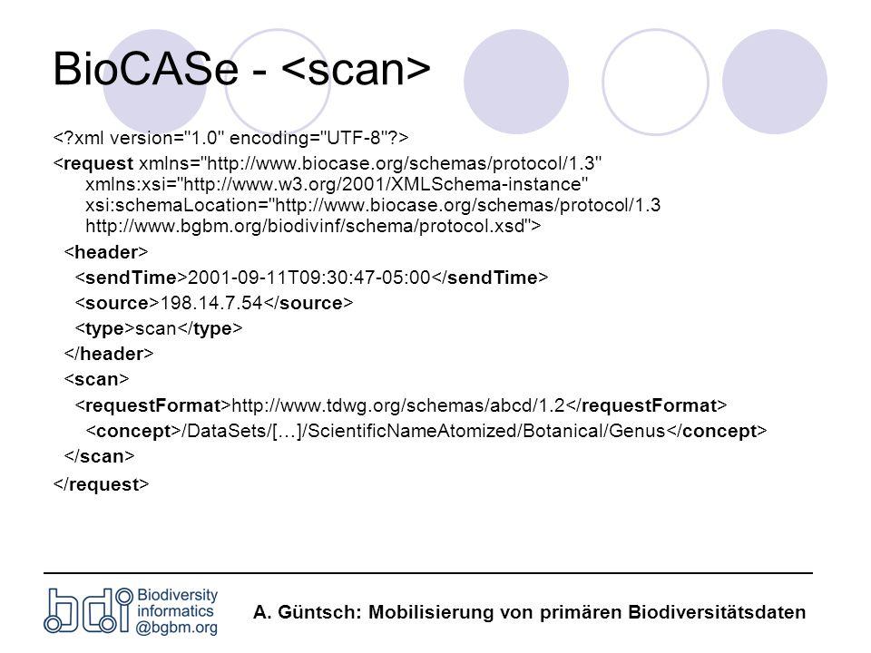 BioCASe - <scan>