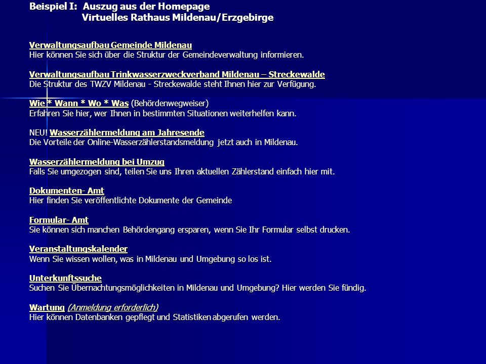 Beispiel I: Auszug aus der Homepage