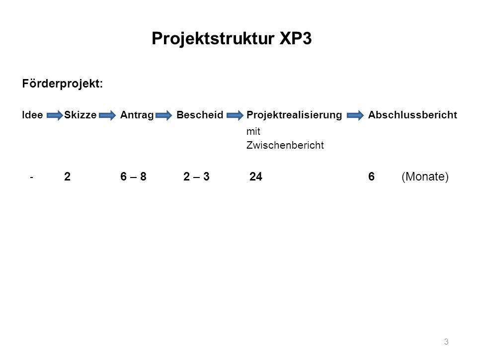 Projektstruktur XP3 Förderprojekt: mit Zwischenbericht