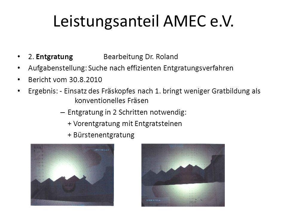 Leistungsanteil AMEC e.V.