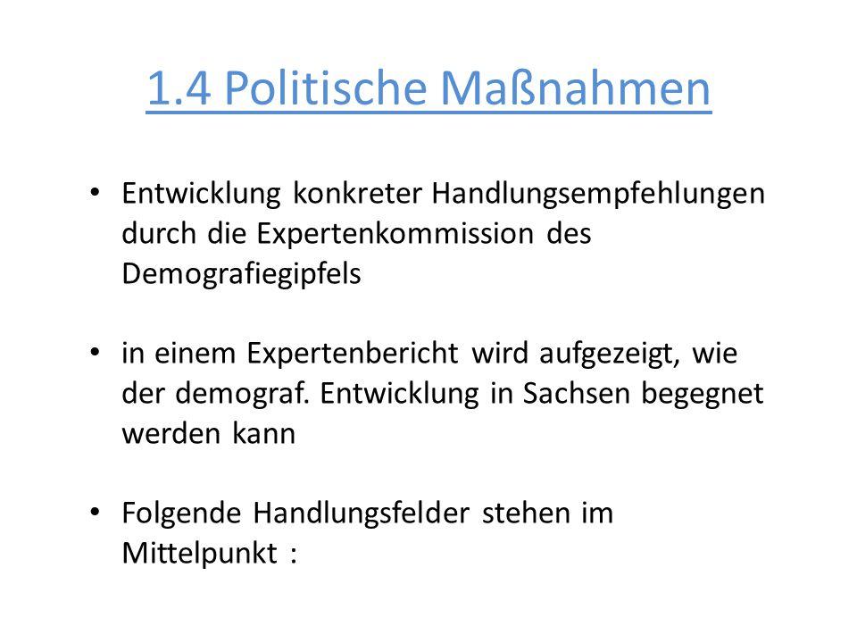 1.4 Politische MaßnahmenEntwicklung konkreter Handlungsempfehlungen durch die Expertenkommission des Demografiegipfels.