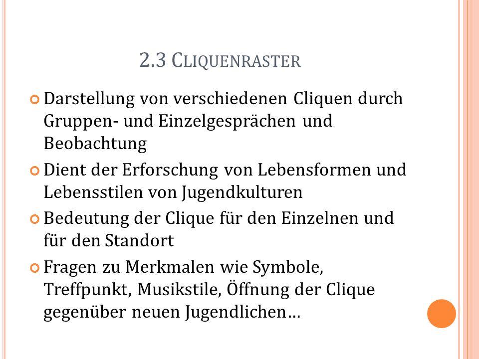 2.3 Cliquenraster Darstellung von verschiedenen Cliquen durch Gruppen- und Einzelgesprächen und Beobachtung.