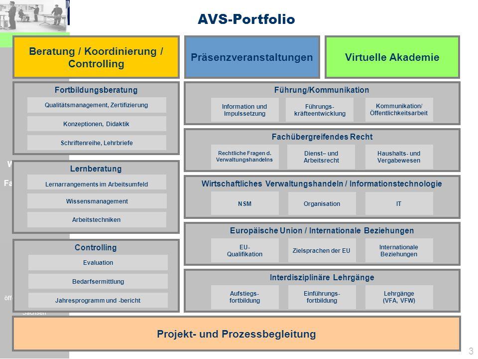 AVS-Portfolio Beratung / Koordinierung / Controlling