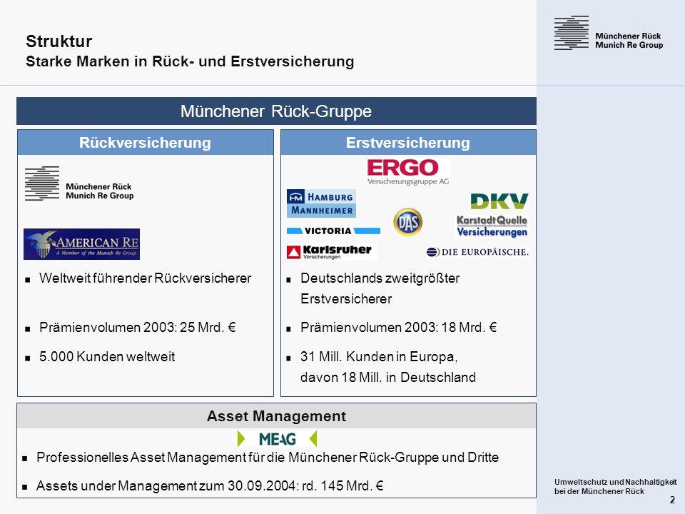 Struktur Starke Marken in Rück- und Erstversicherung
