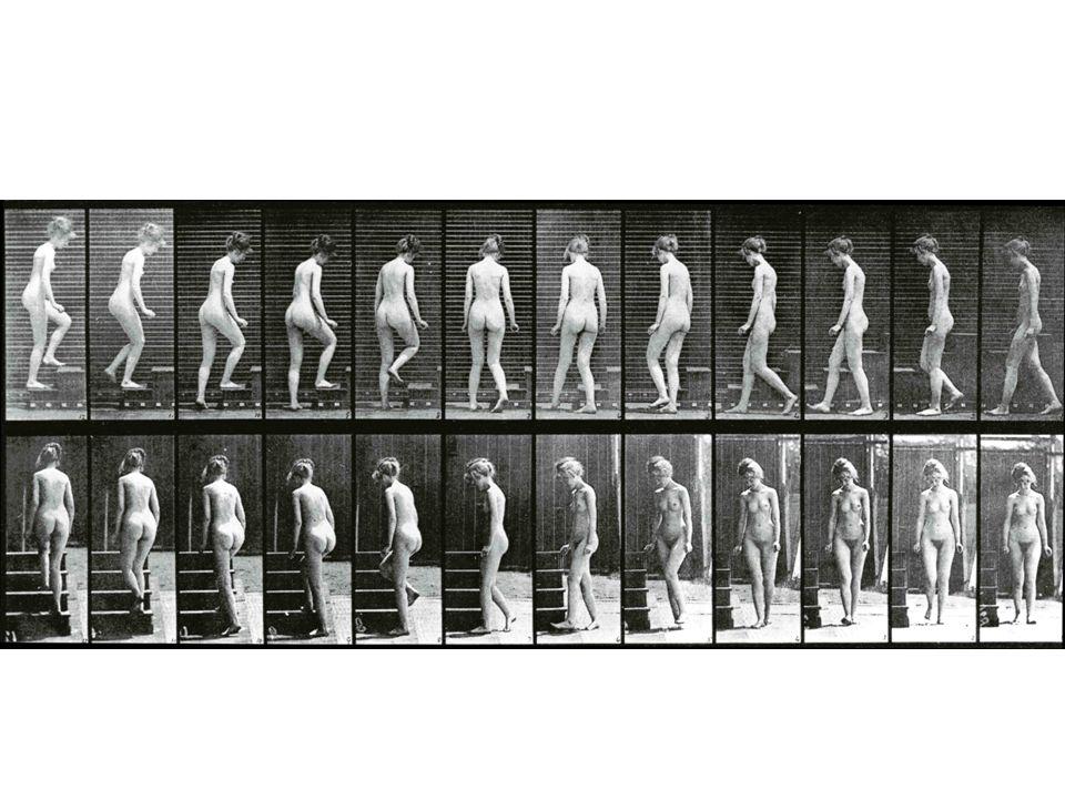 Eadweard Muybridge: Gehende Frau
