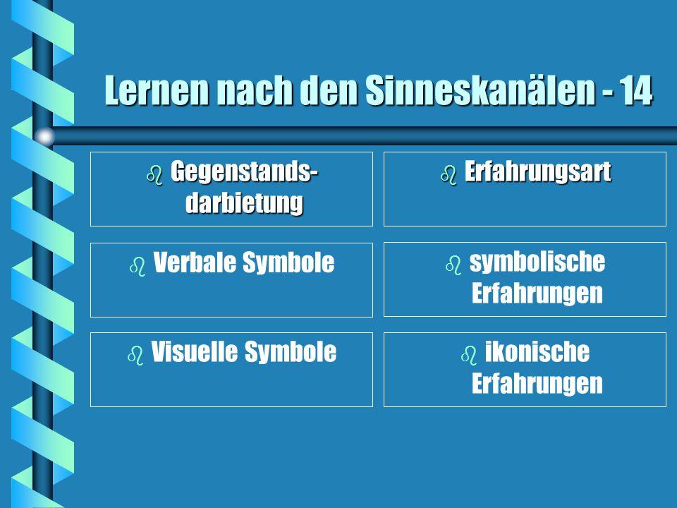 Lernen nach den Sinneskanälen - 14