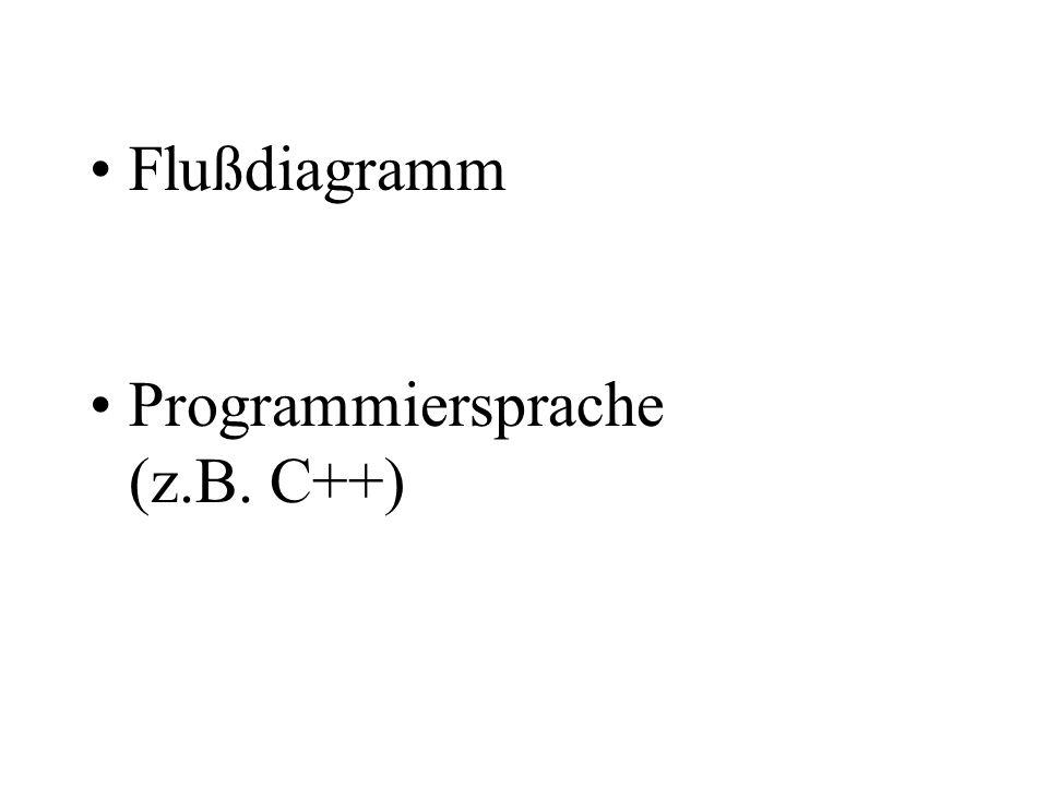 Programmiersprache (z.B. C++)