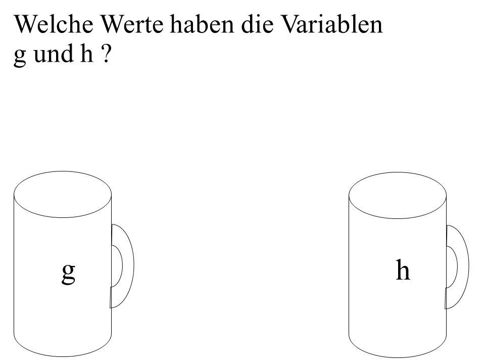 Welche Werte haben die Variablen g und h