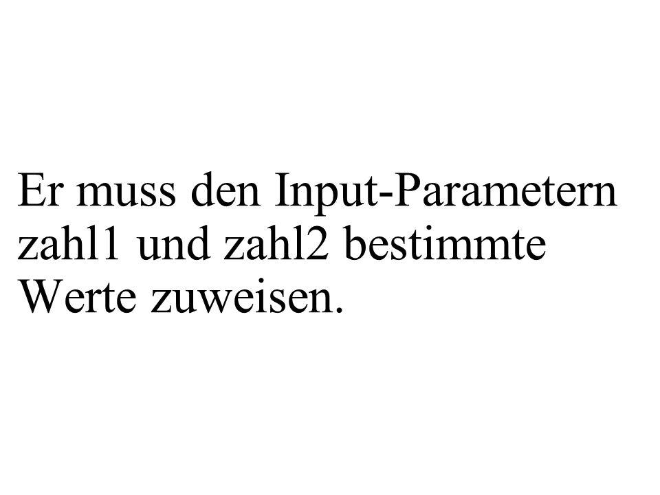 Er muss den Input-Parametern zahl1 und zahl2 bestimmte Werte zuweisen.