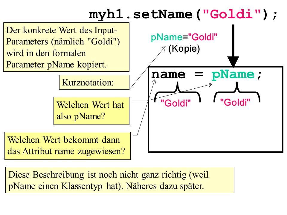 myh1.setName( Goldi ); name = pName;