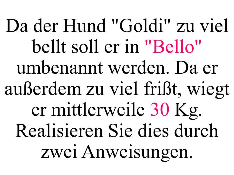 Da der Hund Goldi zu viel bellt soll er in Bello umbenannt werden