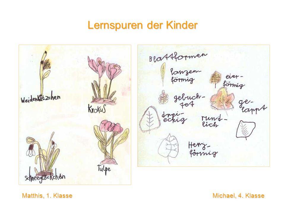 Lernspuren der Kinder Matthis, 1.
