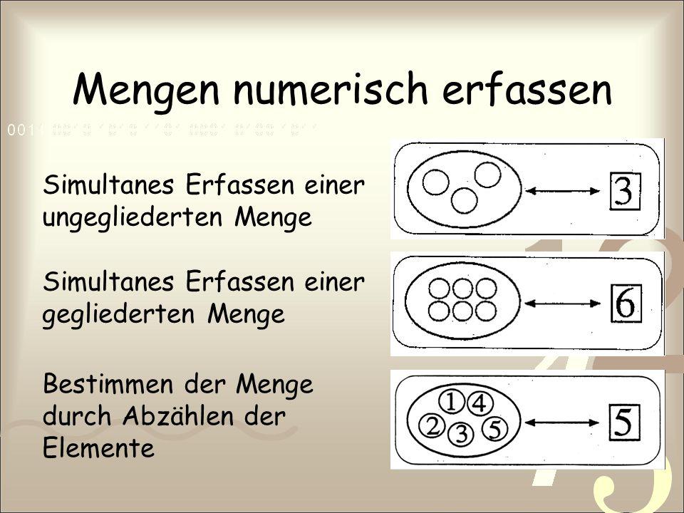 Mengen numerisch erfassen