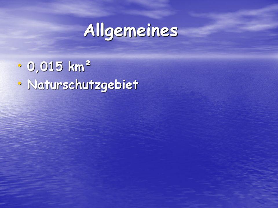 Allgemeines 0,015 km² Naturschutzgebiet