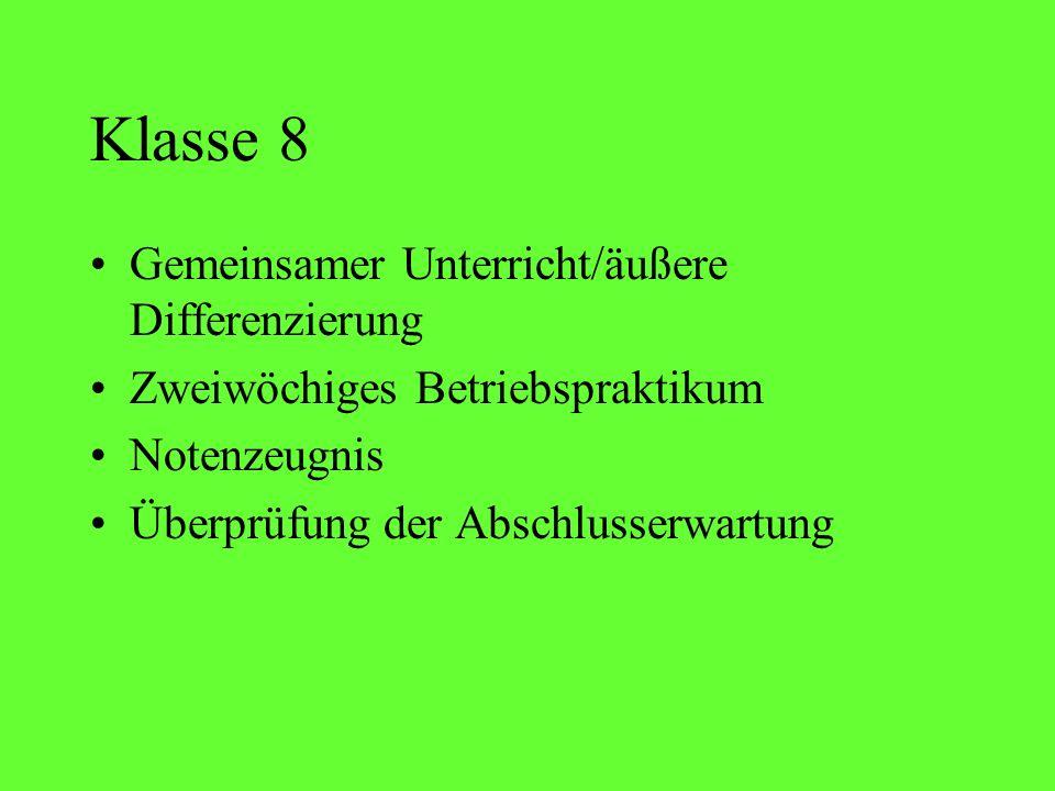 Klasse 8 Gemeinsamer Unterricht/äußere Differenzierung