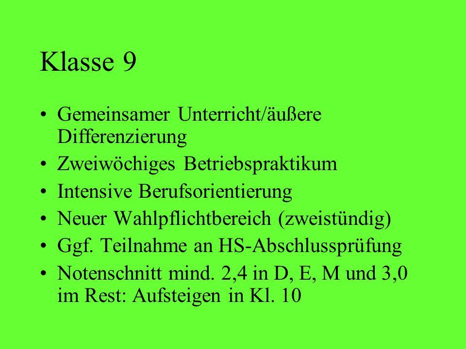Klasse 9 Gemeinsamer Unterricht/äußere Differenzierung
